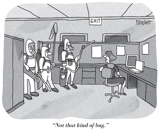 Bug-wrong-kind15-550px